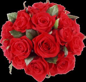 rose png 300x287 - rose_PNG
